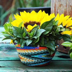 Sunflowers in woven basket