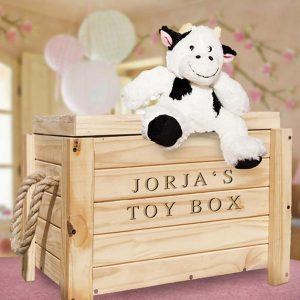 Personalised wooden toy box on wheels